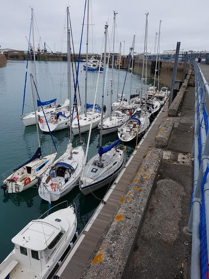 St Helier sardine